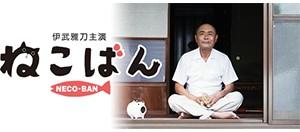 20151208_nekoban_catch
